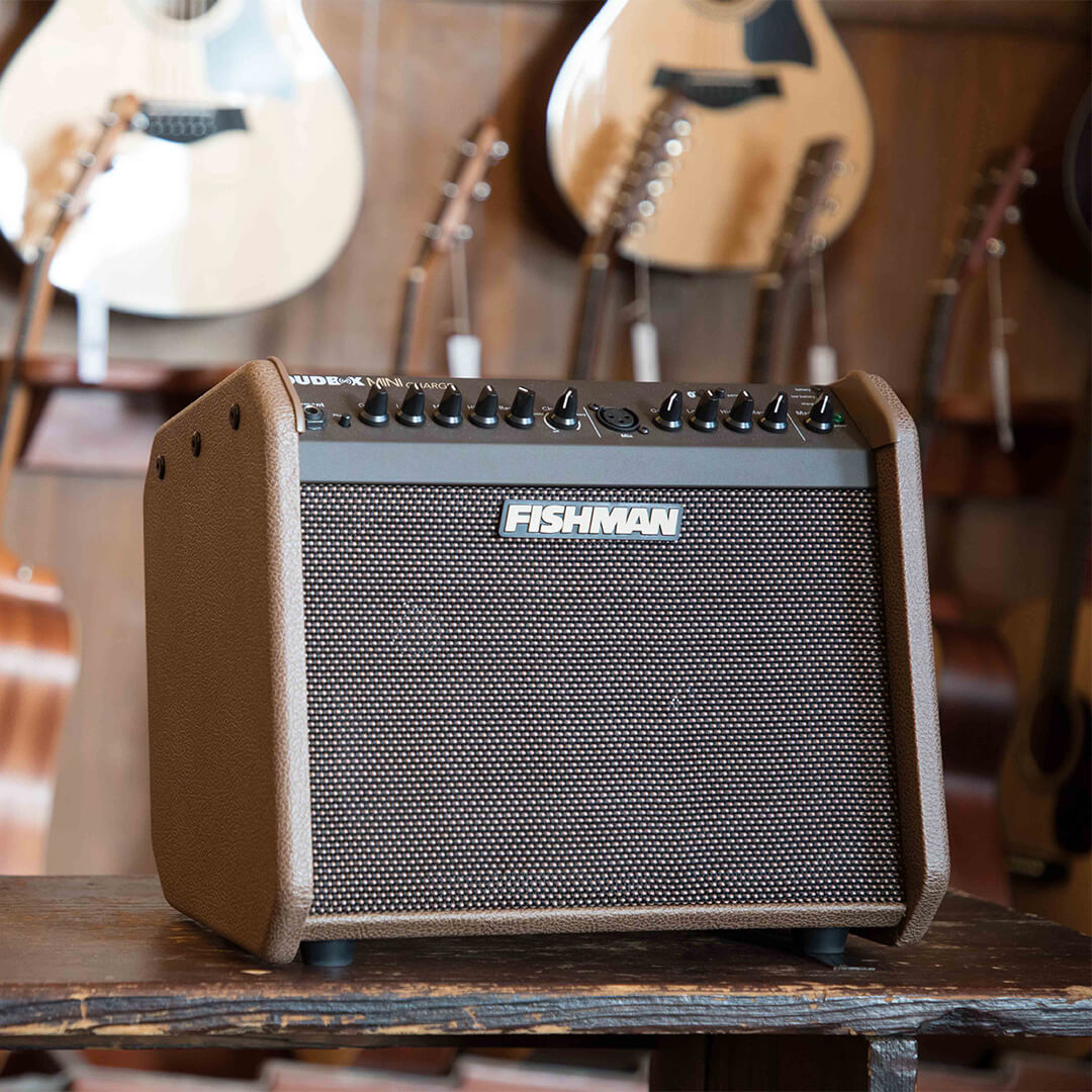 Fishman Loudbox Mini Charge acoustic amp in front of acoustic guitars