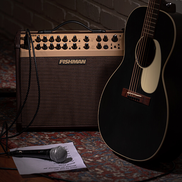 Fishman Loudbox Artist with acoustic and mic