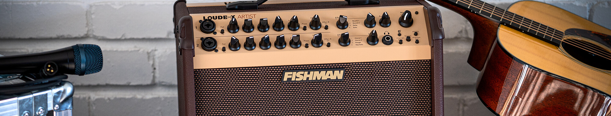 Fishman Loudbox Artist with acoustic guitar