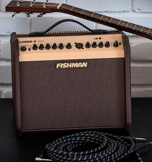 Fishman Loudbox Mini cable acoustic