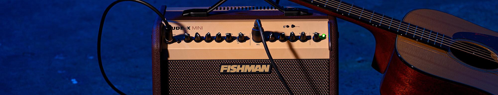 Fishman Loudbox Mini acoustic guitar
