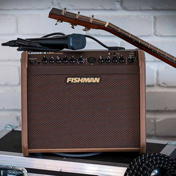 Fishman Loudbox Mini Charge with mic and acoustic