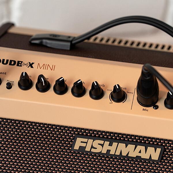 Fishman Loudbox Mini controls