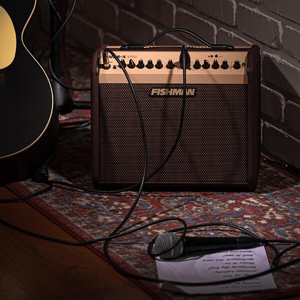 Fishman Loudbox Mini studio with mic