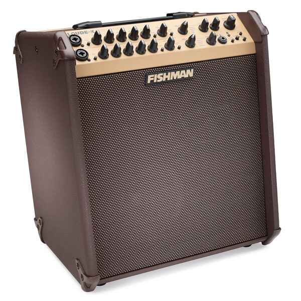 FIshman Loudbox Performer front angle right