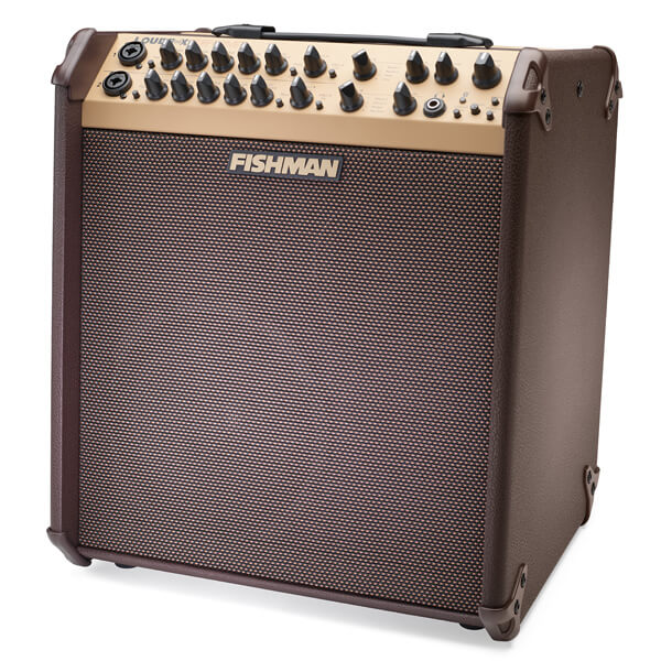 FIshman Loudbox Performer front angle left