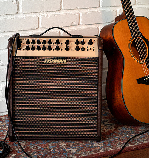 Fishman Loudbox Performer with acoustic guitar