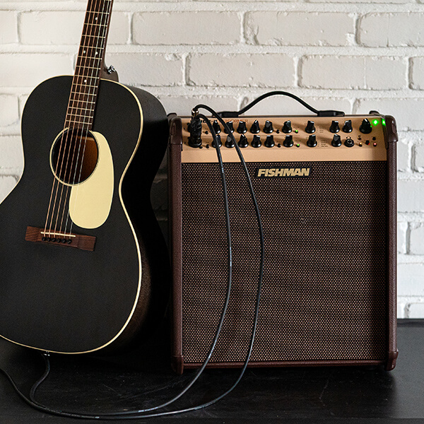 Fishman Loudbox Performer with acoustic