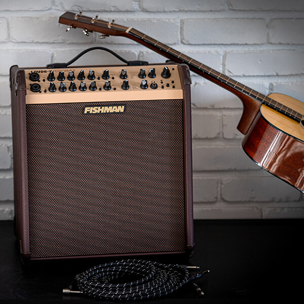 Fishman Loudbox Performer with cable and acoustic