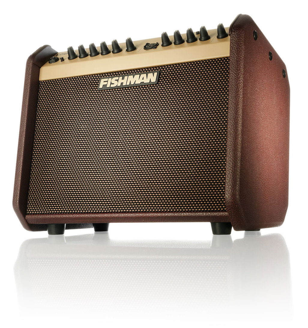 Fishman Loudbox Mini angle hero
